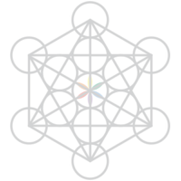 network_tr